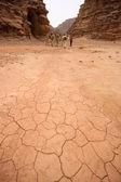 Paysage désertique — Photo