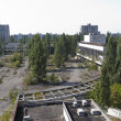 Постер, плакат: City of Pripyat