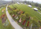 Arboretum in Slovenia — Stock Photo