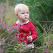 Baby girl walking in heather field along the forest with pine — Stock Photo