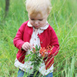 Baby girl playing in the autumn forest holding small rowan branch — Stock Photo #42670351
