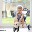 Girl playing with puppy toy sitting in the doll stroller — Stock Photo #42670551