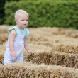 Baby girl is walking thought a hay labyrinth — Stock Photo