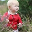 Baby girl walks in heather field — Stock Photo #42673107
