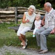 Grandfather and grandmother with baby on a bench — Stock Photo #42673759