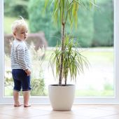 Baby girl playing inside of the house — Stock Photo