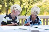 Twin brothers doing together homework — Stock Photo