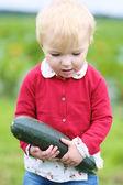 Girl carrying heavy ripe zucchini — Stock Photo
