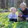 Boy with his toddler sister playing together in the forest — Stock Photo
