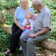 Happy grandparents relaxing in beautiful summer forest with their little granddaughter — Stock Photo #44119625