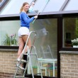 Young woman standing on step ladder cleaning roof windows — Stock Photo #44213061