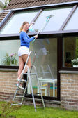 Young woman standing on step ladder cleaning roof windows — Stock Photo