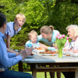 Family having healthy bbq lunch — Stock Photo