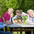 Family having healthy bbq lunch — Stock Photo #45240139