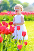 Little girl playing in the park full of blooming red tulips — Stock Photo
