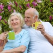 Couple drinking tea in the garden — Stock Photo #46186059