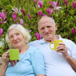 Couple drinking tea in the garden — Stock Photo #46186061