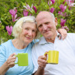 Couple drinking tea in the garden — Stock Photo