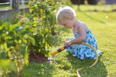 Cute little girl watering flowers in the garden using spray hose — Stockfoto