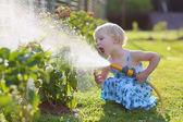 Mignonne petite fille arrosant des fleurs dans le jardin à l'aide de la douchette — Photo