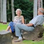 entspannende altes Paar im park — Stockfoto