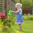 Cute toddler girl watering flowers in the garden — Stock Photo #50845685