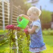 Cute toddler girl watering flowers in the garden — Stock Photo #50845699
