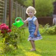 Cute toddler girl watering flowers in the garden — Stock Photo #50845705