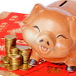 Money and Piggy Bank. — Stock Photo