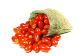 Tomatoes (Lycopersicon esculentum Mill). — Stock Photo