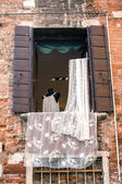 Venetian lace at the open window — Stock Photo