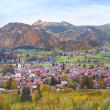 Little village in the Alps — Stock Photo #43242707