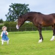 Cute little baby girl feeding a big horse — Stock Photo