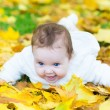 Baby girl playing in an autumn park — Stockfoto #43243109