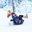 Mother and son having fun on a sleigh ride — Stock Photo #43243329