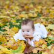 Baby girl playing in an autumn park — Stockfoto #43244071