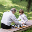 Grandfather and grandson playing chess in a park — Stock Photo #43244597