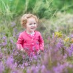 Baby girl walking in purple autumn flowers — Stock Photo #43244853