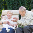Grandparents playing with a little baby — Stock Photo #43245303