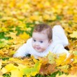 Baby girl playing in an autumn park — Stock Photo #43246237