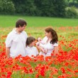Beautiful family of four standing in a field — Stock Photo