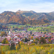 Little village in the Alps — Stock Photo #43246767