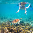 Child snorkeling in a tropical sea — Stok fotoğraf