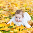 Baby girl playing in an autumn park — Stock Photo #43249065