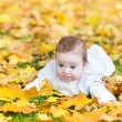Baby girl playing in an autumn park — Stockfoto #43249065