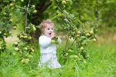 Baby girl picking apples — Zdjęcie stockowe