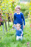 Cute happy boy and his adorable baby sister picking fresh grapes together — Stockfoto