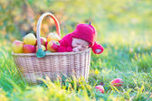 Newborn baby in big basket with apples — Foto de Stock