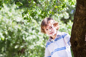 Boy playing under a big tree — Stock Photo