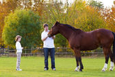 Father and son feeding a horse — Stock Photo